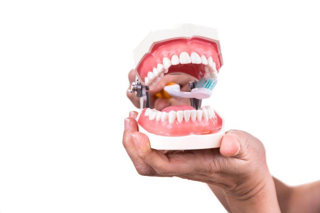 Почистване на зъби след вадене на мъдрец- Медика 3 Дент